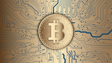 Photo of Bitcoin Revolution App, Bitcoin Emergence, and Many Other Things You Should Know in 2021