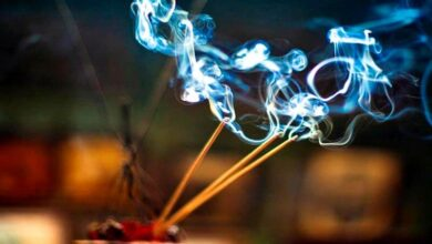 Photo of 6 Awesome Facts Which Forces You to Burn Incense Sticks