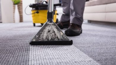 Photo of Things to Consider When Choosing the Right Carpet Cleaner Service Provider